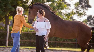 Coachen met paarden - Eleonore EQuus