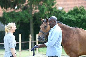 Coachen met paarden | Eleonore Equus