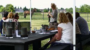 Coachen met paarden voor teambuilding - Eleonore EQuus