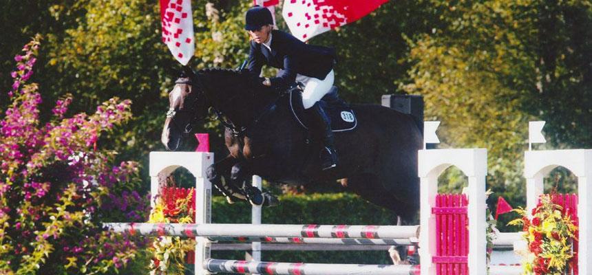 Van sportpaard naar coachpaard | Eleonore EQuus - Coachen met paarden